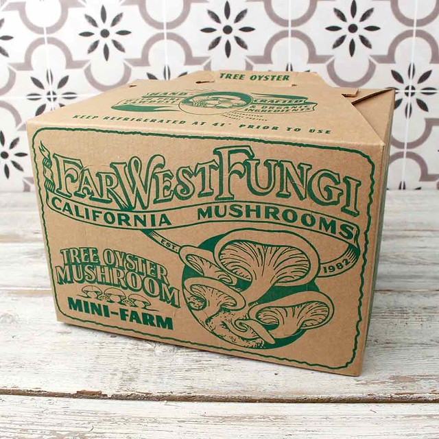 Know Your Farmer: Far West Fungi