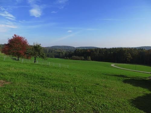 20170930 03 087 ostbay Herbst Berge Wald Baum Wiese Weg