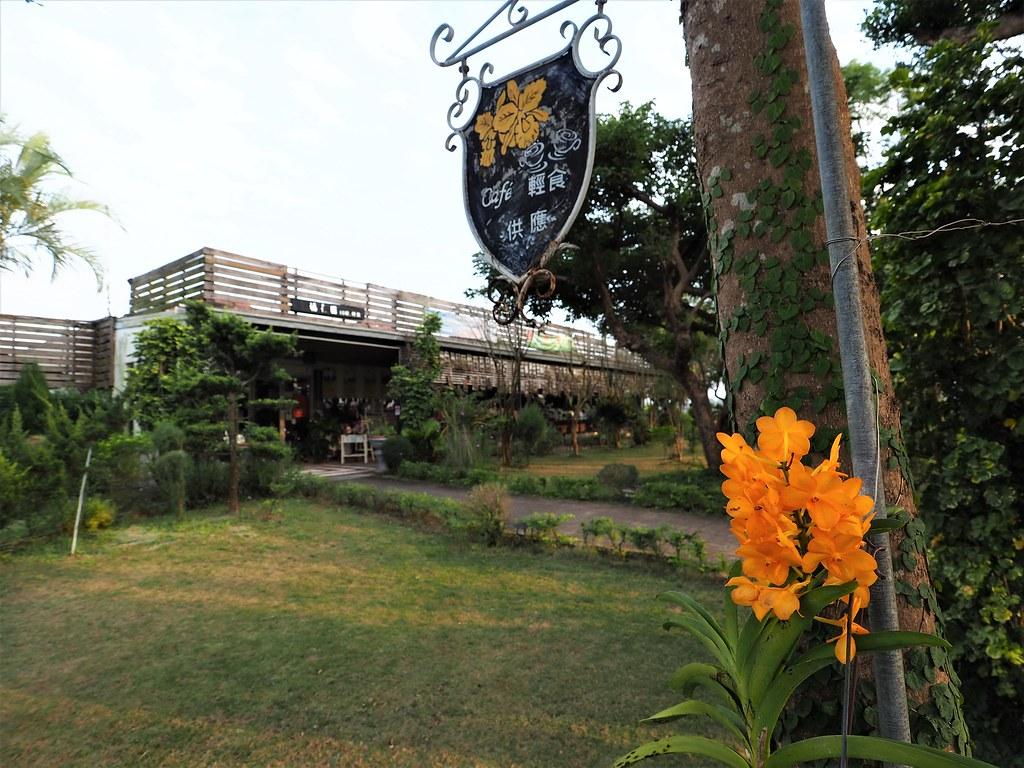 山上蘭科植物園 (5)