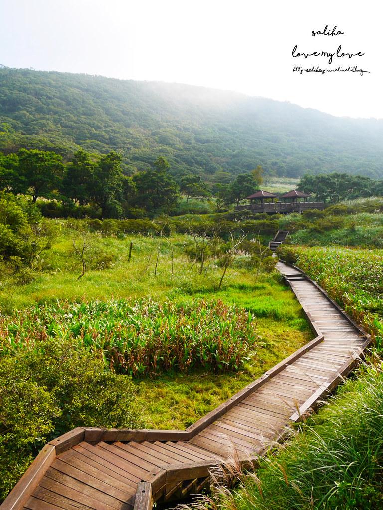 台北一日遊陽明山私房秘境推薦好玩好走親子景點大屯自然公園 (5)