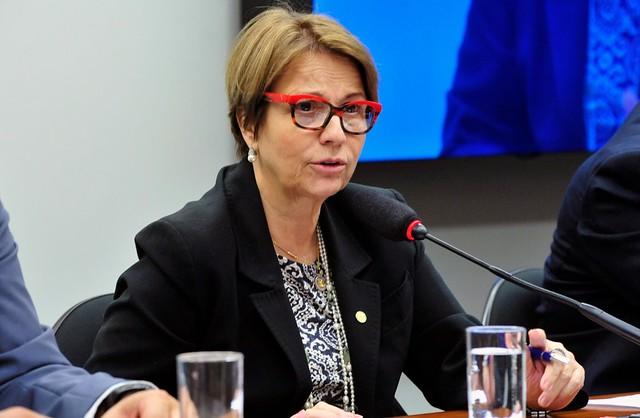 """Deputada Tereza Cristina (DEM-MS) preside atualmente a Frente Parlamentar Agropecuária (FPA), conhecida como """"bancada ruralista"""" - Créditos: Luis Macedo/Câmara dos Deputados"""