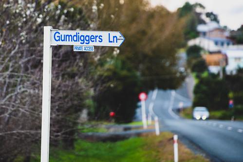 Gumdiggers Lane
