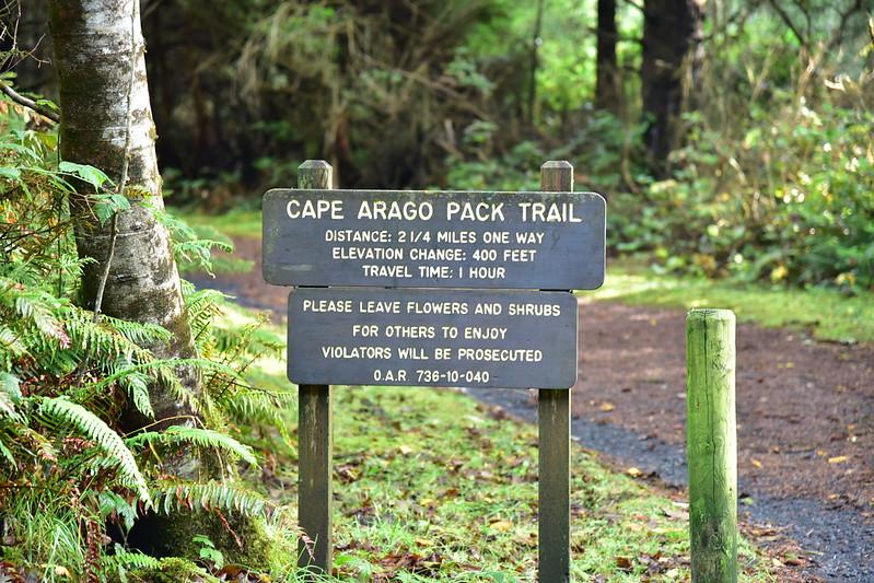 Cape Arago Hike