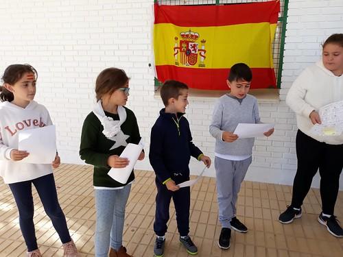 Constitución (27)