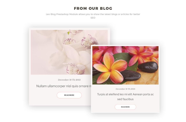 blog module - Cosmetic and Beauty Prestashop 1.7 theme - Cosmetic and Beauty Store - free install support