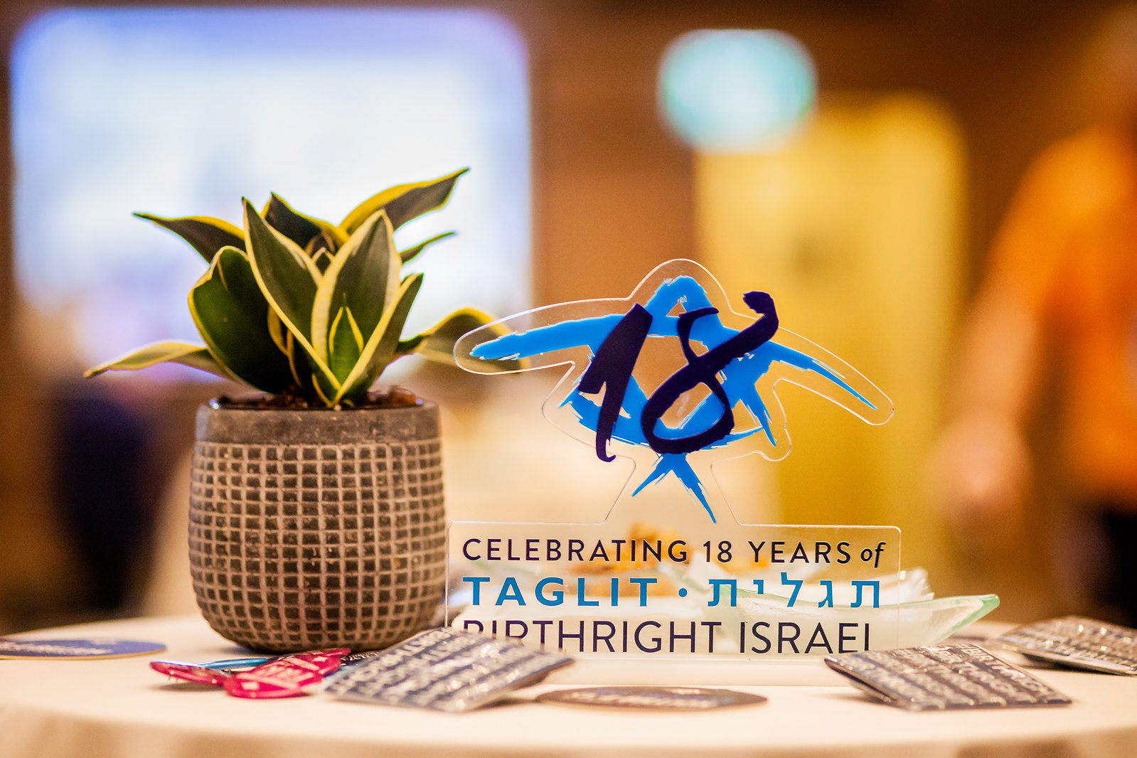 Birthright Israel at the 2018 GA