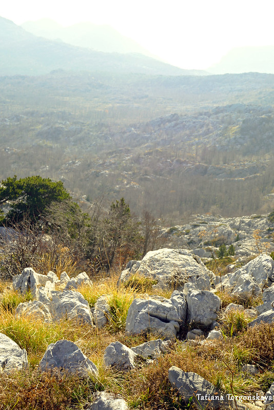 Пейзаж, открывающийся с вершины Борова глава