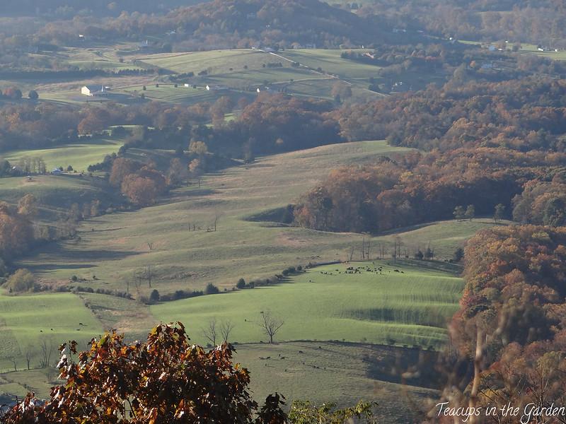 9-Shenandoah Valley