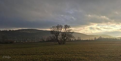 Abendliche Saaleaue bei Weißen/Thüringen