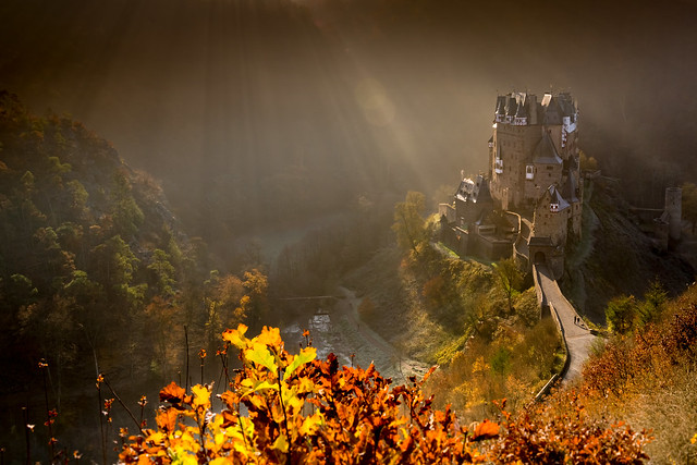 Burg Eltz Herbst Nebel