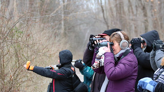 Second Saturday Bird Walk at Rocky River Reservation by Marty Calabrese