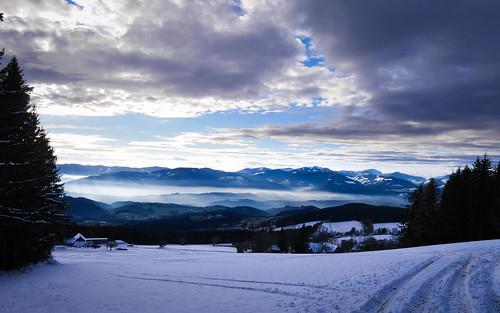 Miesenbach - Wanderung zur Wildwiesenwarte