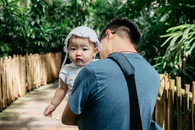 Singapore Zoo Trip