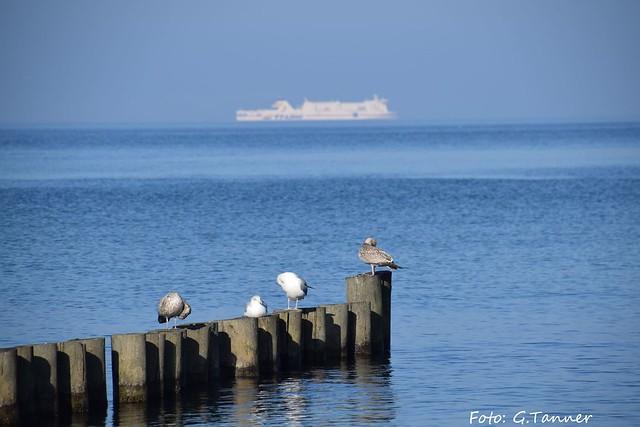 Ostsee - Kühlingsborn und Umgebung im Herbst