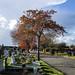 London Road Cemetery, Mitcham