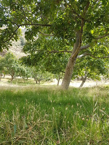 Spanien Andalusien Sierra Nevada Alpujarras @ Spain Andalusia © Andalucía La Alpujarra Granadina ©
