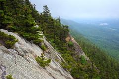White Rocks Fog
