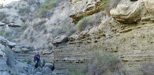 Megasismitas en depósitos lacustres - Rambla de los Pilares, Castilléjar (Granada, España) - 04