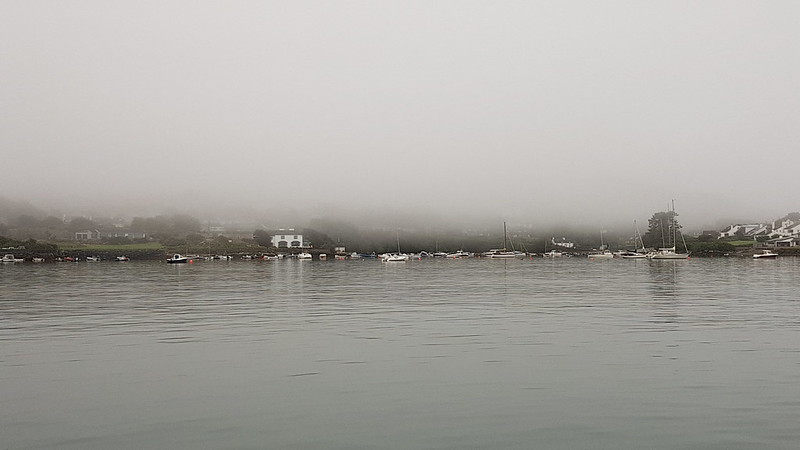 Glengarriff in the fog