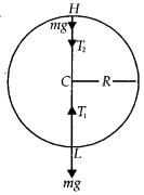 NCERT Solutions for Class 11 Physics Chapter 5 Law of Motion 28
