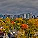 Autumn Cityscape - Ottawa 11 18 by Mikey G Ottawa