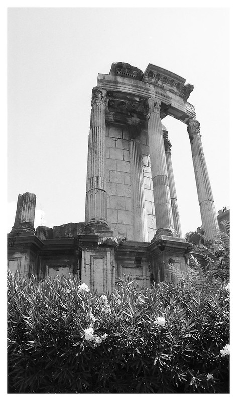 Rome Forum 11