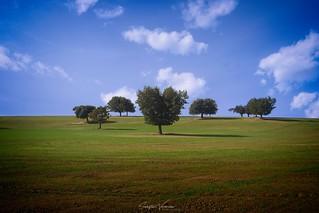 Paysages - Landscapes