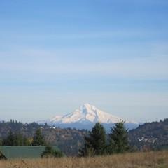 Mount Hood from Powell Butte