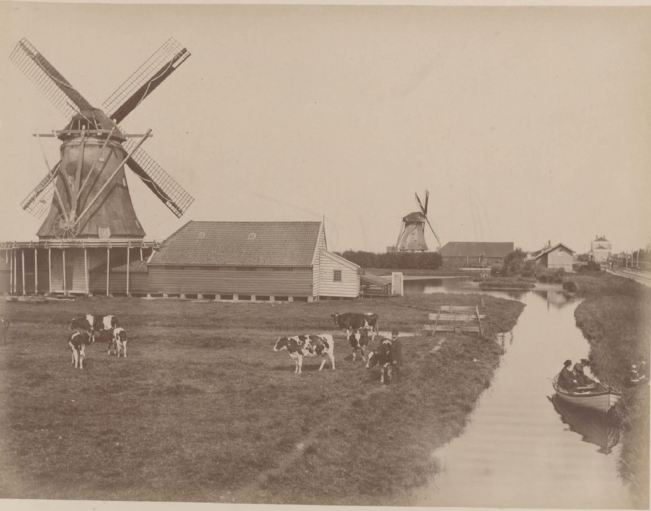 Зандам. Луг и мельницы, 17 мая 1888