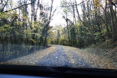 Дорога в тупик