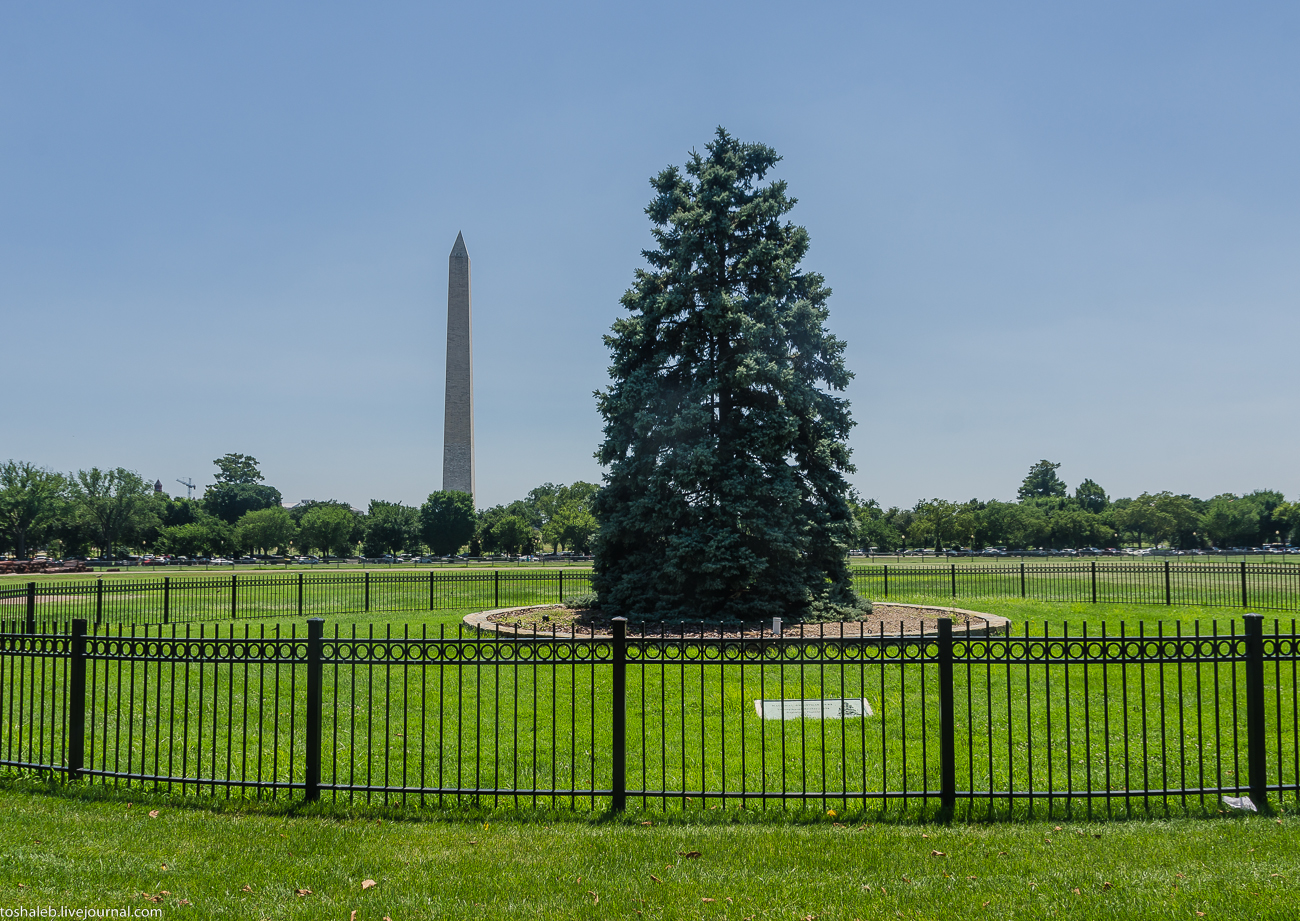 Washington_city-16