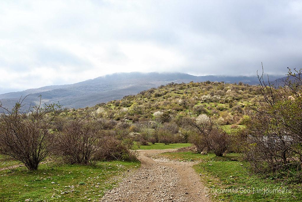 окрестности Долины Привидений фото