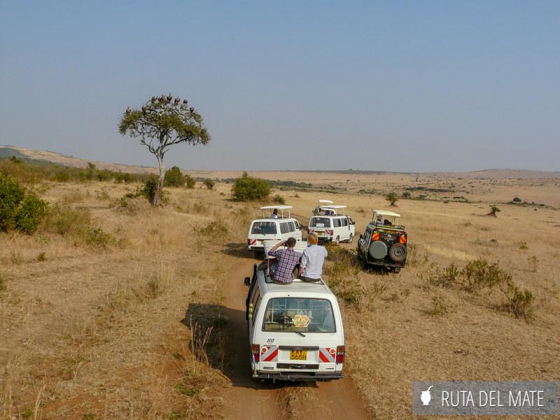 Guia para viajar a Kenia y Tanzania P1140103