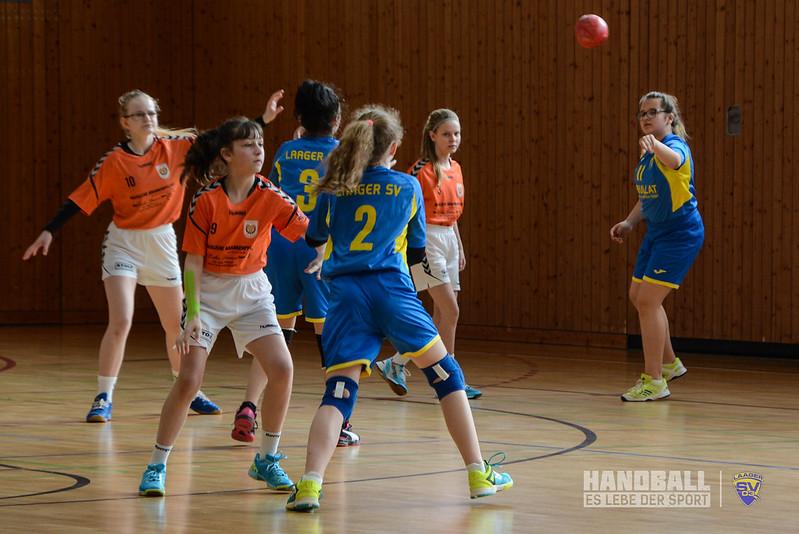 20190316 SV Motor Barth - Laager SV 03 Handball wJD (7).jpg