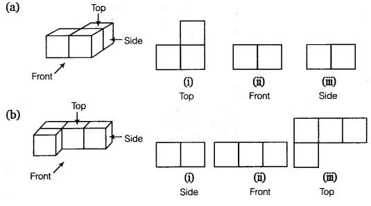 NCERT Solutions for Class 8 Maths Chapter 10 Visualising Solid Shapes 10