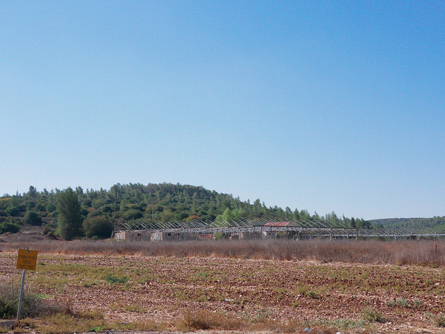 Emek-Haela, Israel., Panasonic DMC-GX85, Leica DG Summilux 25mm F1.4 Asph.