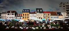 Tarbes (Hautes-Pyrénées, Fr) – Le marché aux fleurs