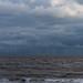 348/365 Windy by JulieMeakins