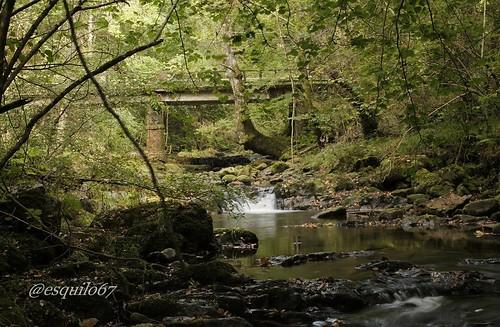 Naturaleza en estado puro, Ucieda, Parque Natural Saja-Besaya
