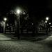 Divenskiy garden (city park) at night, St. Petersburg (Russia) #98, 07-2018, (Vlad Meytin, vladsm.com)