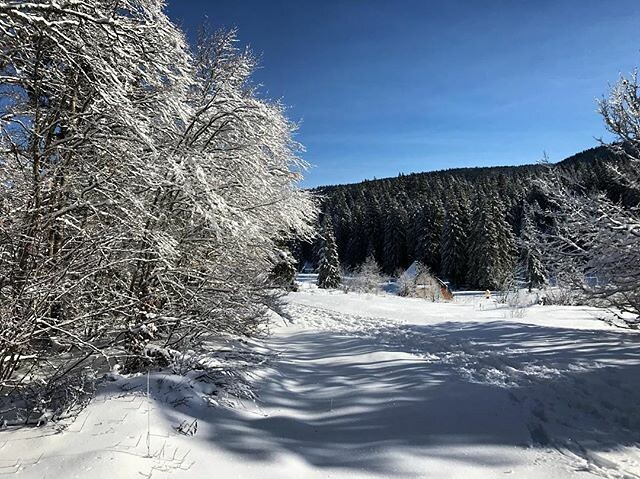 #nordicskiing #crosscountryskiing #vercors #frenchalps #worklessskimore