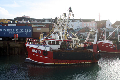 Fishing Boat BM19