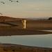Plan d'eau et barrage de Michelbach by Gisou68Fr
