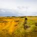Green Sand Beach - Naalehu