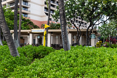 Starbucks Kaanapali Beach Hawaii