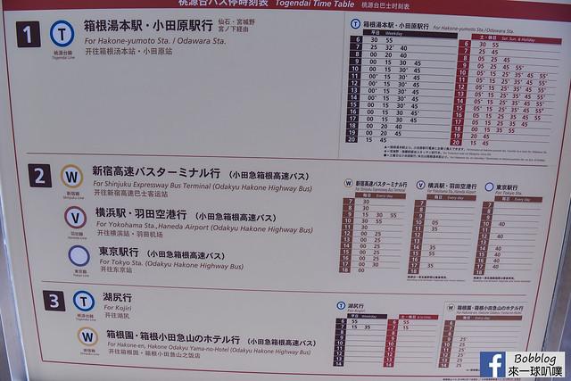 箱根纜車+大湧谷-70