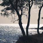 Wasser & Küste - Fehmarn - 28. September 2018