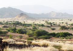 Bisha, SW Eritrea, early morning e