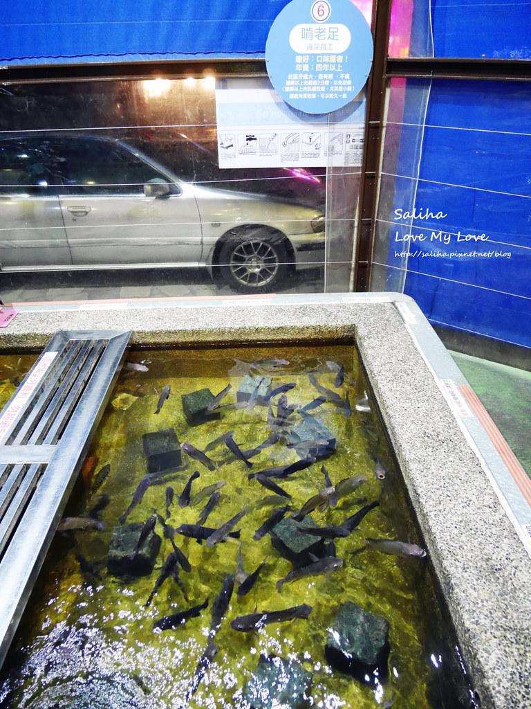 宜蘭礁溪一日遊景點推薦礁溪湯圍溝重口味溫泉魚去角質 (7)