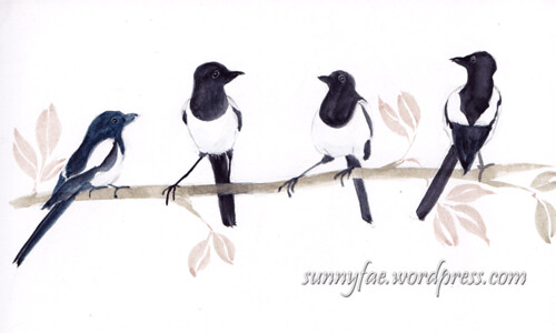 magpies in a line